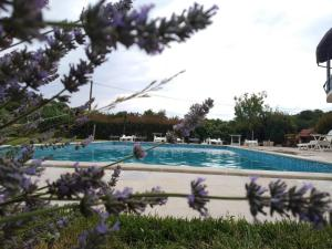 The swimming pool at or close to Apartments Šeherzada