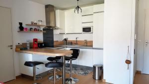 A kitchen or kitchenette at La Canopée Annecy centre