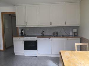 Una cocina o zona de cocina en Winjum Apartments Aurland Stegastein