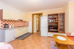 Ett kök eller pentry på Apartment Jadranka
