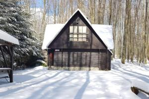 Slovak cottage near Bratislava in the heart of the Carpathians v zime