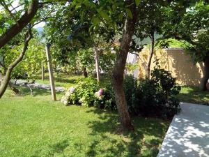 A garden outside Apartments Villa Andjela