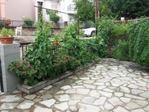 A garden outside Vista delle Rocce
