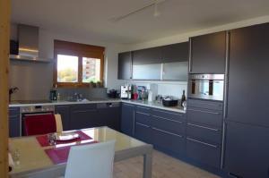 Küche/Küchenzeile in der Unterkunft Appartements Perce Neige