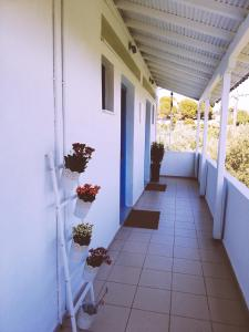 A balcony or terrace at Rigas Rooms