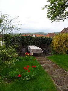 A garden outside Ferienwohnung im Harzer Landhaus