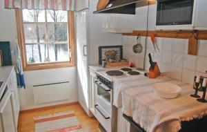 Cuisine ou kitchenette dans l'établissement Holiday home Gadderöd Dingle