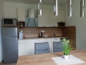 A kitchen or kitchenette at Apartments Vila Darja