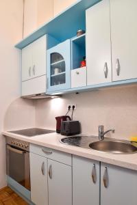 A kitchen or kitchenette at Ljubljana Center Apartments