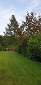 Ogród w obiekcie Zielona Mila Dom wakacyjny