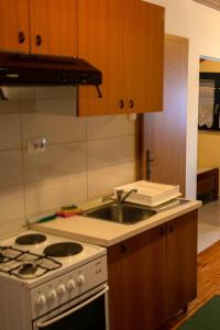 A kitchen or kitchenette at Apartment Viganj 633a