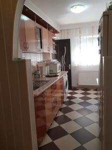 A kitchen or kitchenette at Apartament Sofy