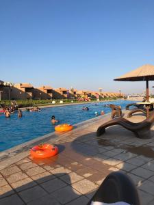 The swimming pool at or near Malibu Elsokhna Chalet