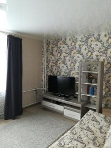 Телевизор и/или развлекательный центр в Comfortable apartments on Anokhina