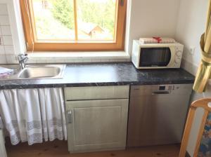 A kitchen or kitchenette at Almhaus Karantanien