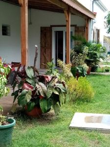A garden outside Résidence Karukéra