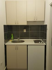 A kitchen or kitchenette at Apartman 1 ,Avalska 15 Gaj