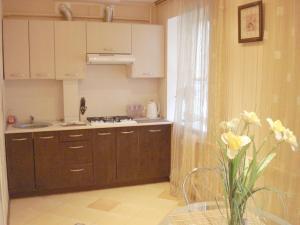 A kitchen or kitchenette at Apartment - Pokladova Street