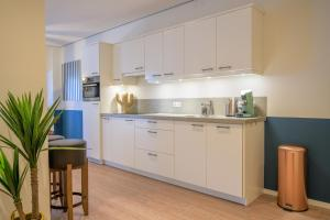 A kitchen or kitchenette at Best Western Apartments Groningen Centre