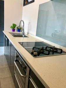 A kitchen or kitchenette at Chez Amy et Yaya - Terrasses de l'Océan