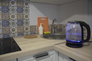 A kitchen or kitchenette at Apartment 1st Trekhgorka
