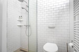 A bathroom at Downtown Charm - Barónsstígur 41