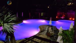 The swimming pool at or near MA3201 Beachfront Luxury 3 bed 2 bath Miami Beach Condo
