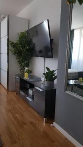 Televízia a/alebo spoločenská miestnosť v ubytovaní Studio apartment Hypnos Zagreb