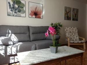 Molina. Acogedor apartamento, amplio y céntrico