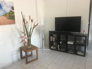 A television and/or entertainment center at appart coeur de rhum
