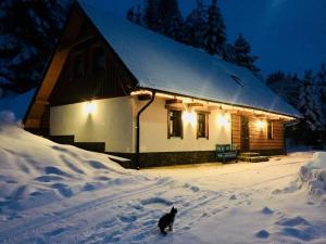 Tomasova chata v zime