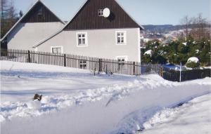 Holiday home V Koutech im Winter