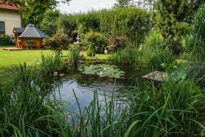 A garden outside Ferienanlage Beatrix