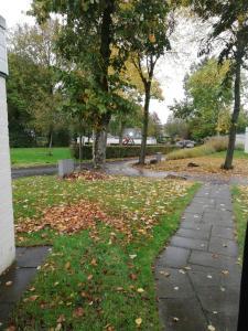 A garden outside Rustige, gelijkvloerse vakantiewoning met 2 slaapkamers in Simpelveld, Zuid-Limburg