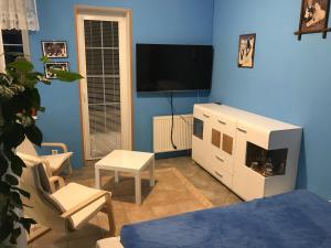 TV a/nebo společenská místnost v ubytování PEC 313