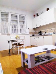 A kitchen or kitchenette at Podgorica Center