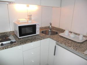 A kitchen or kitchenette at Apartamentos Descartes