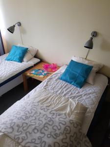 Lova arba lovos apgyvendinimo įstaigoje City Apartment Hotel