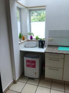 Una cocina o kitchenette en Monoambiente Centro San Martin de los Andes