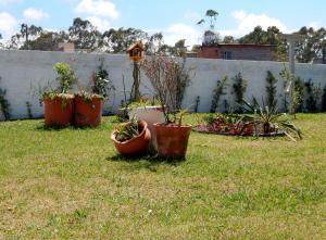 Jardín al aire libre en Casa, Praia do Moçambique
