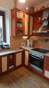 Kuchyň nebo kuchyňský kout v ubytování Lipno99