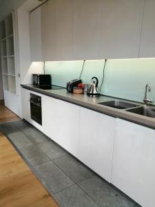 A kitchen or kitchenette at Royal William Yard Apartment