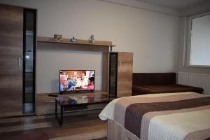 A television and/or entertainment center at Hospital View Apartment