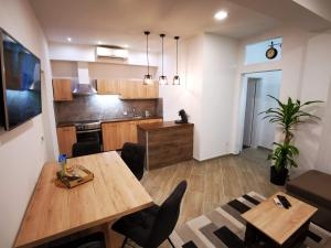 A kitchen or kitchenette at Apartment Dante