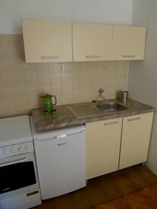 A kitchen or kitchenette at Apartments Maslina