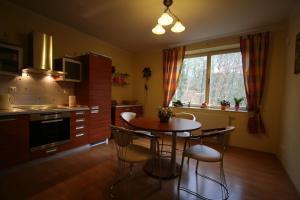Kuchyň nebo kuchyňský kout v ubytování Marianka