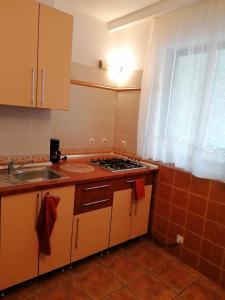 O bucătărie sau chicinetă la Villa Edera Residence - Gazda Profesionista