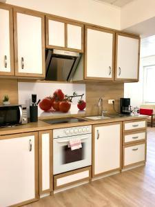 Küche/Küchenzeile in der Unterkunft Schlafen wie Zuhause Avianaart Monteur und Ferienwohnung