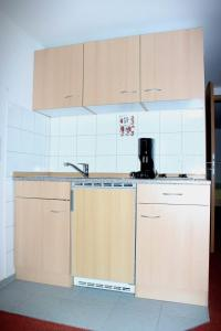 A kitchen or kitchenette at Das Apartmenthaus
