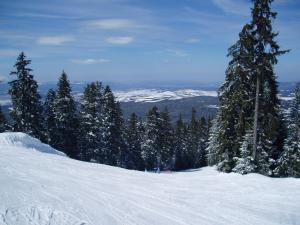 Apartments Borovets during the winter